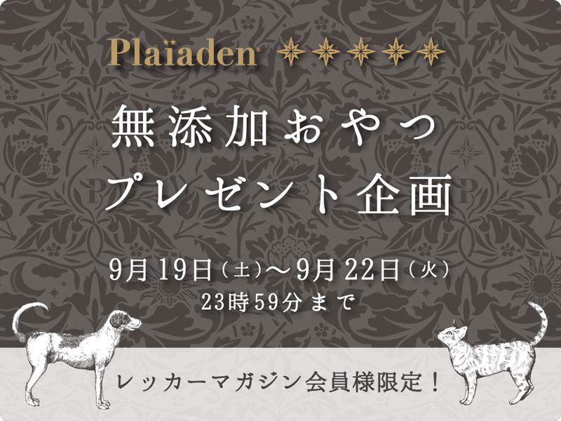 無添加おやつプレゼント企画★(2020年9月19日更新)