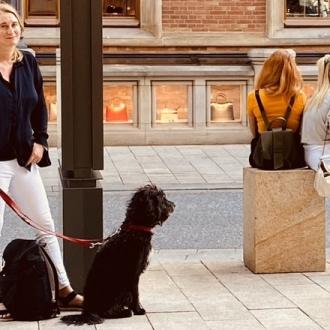 犬との散歩で気づく、四季と街の移ろい