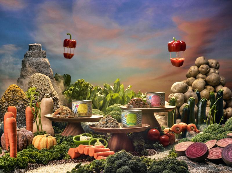 2020年秋、野菜100%ウェットフード「ピュアベジグルメ」誕生!