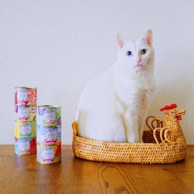オモムロニ。さんの愛猫とジーベンデリカテッセン