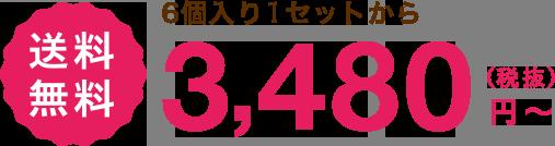 ウェットフード 6個入り1セットから 定期でお届け 送料 無料 3,480(税抜)円〜